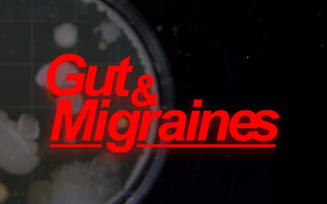 Migraines could be caused by gut bacteria