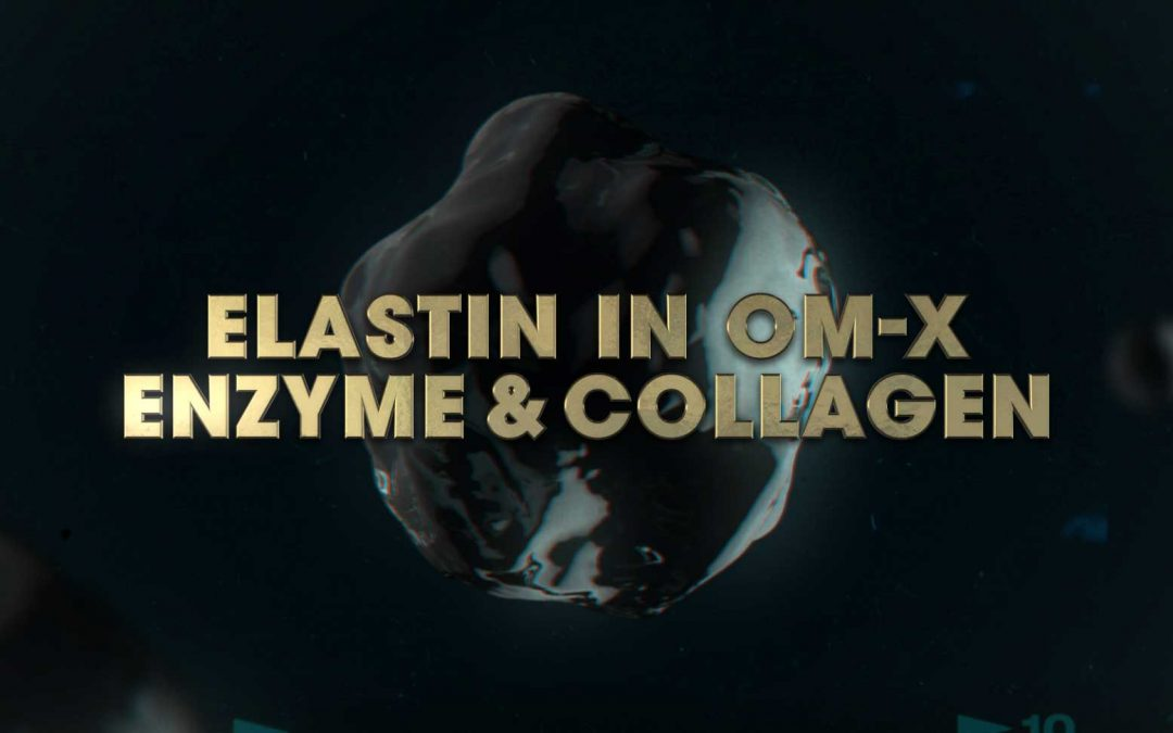 Benefit of Elastin in OM-X Enzyme & Collagen