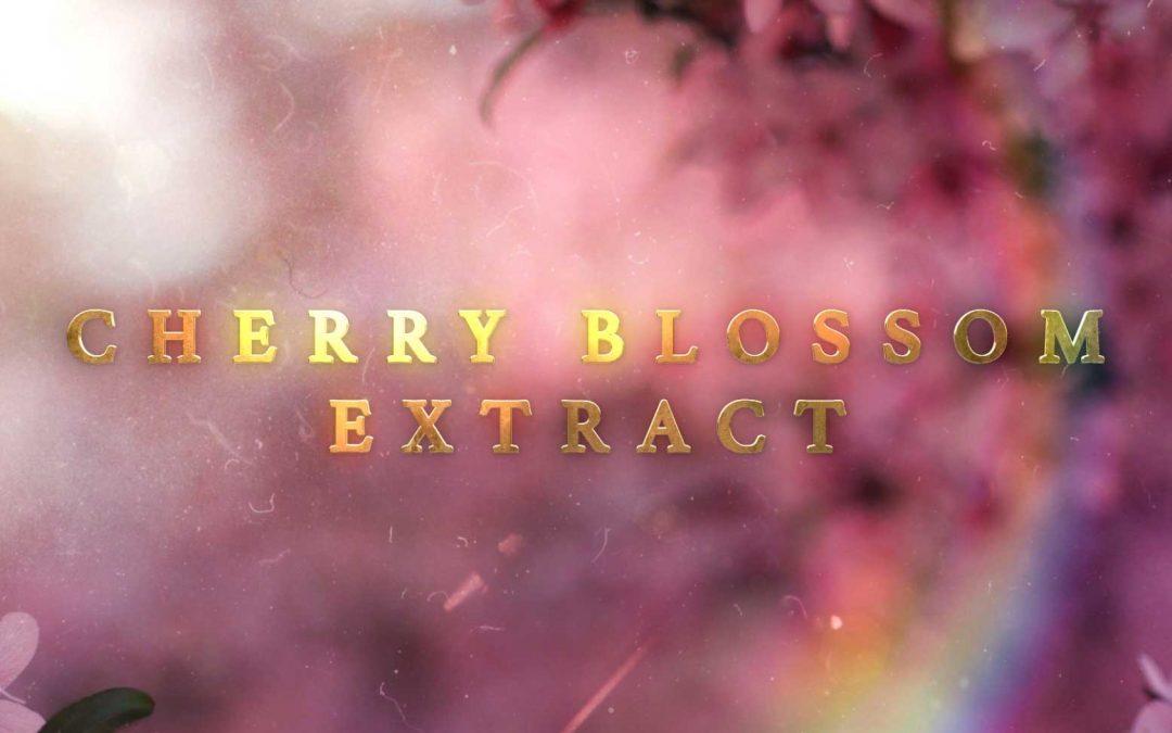 Cherry Blossom Extract